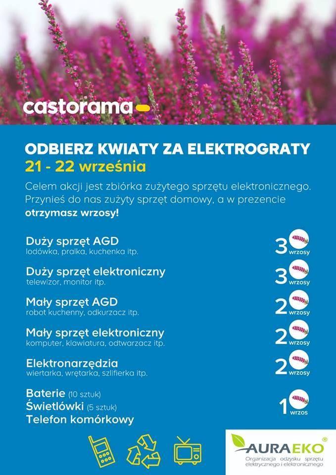 Kwiaty Za Elektrograty Zespol Szkol Zawodowych Nr 1 W Starachowicach